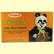 Xiongmao Panda Jalea Real - Integralia - 20 amp