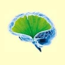 Desórdenes Neurodegenerativos - Información