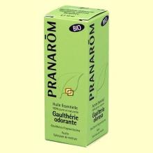 Gaulteria olorosa - Aceite esencial Bio - 10 ml - Pranarom *
