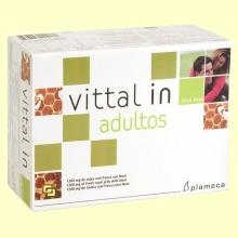 Vittal In Adultos - Jalea Real Fresca con Noni - 20 viales - Plameca