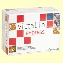 Vittal In Express - Jalea Real Fresca con Guaraná - 20 viales - Plameca