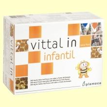 Vittal In Infantil - Jalea Real Fresca con sabor a frutos del bosque - 20 viales - Plameca