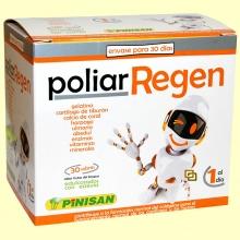 Poliar Regen - Colágeno - 30 sobres - Pinisan Laboratorios