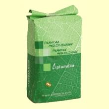 Té Verde Hoja Entera - 1 kg - Plameca
