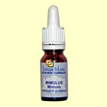 Mímulo - Mimulus - 30 ml - Lotus Blanc