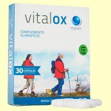 Vitalox - Antioxidante - 30 cápsulas - Mahen