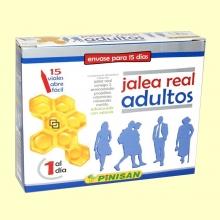 Jalea Real Adultos - 15 viales - Pinisan Laboratorios