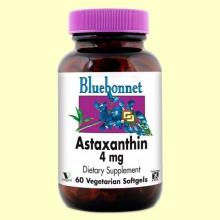 Astaxantina 4 mg - 60 cápsulas blandas vegetales - Bluebonnet