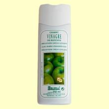 Champú de vinagre de manzana - 250 ml - Bellsola