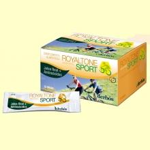 Royaltone Sport - Actividades deportivas - 15 sticks - Derbós *
