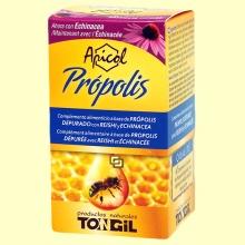 Apicol Própolis - 40 perlas - Tongil