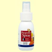 Elixir Bucal Própolis Spray - 60 ml - Montstar