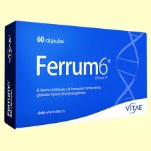 Ferrum6 - 6 sales de hierro - 60 cápsulas - Vitae