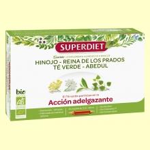 Cuarteto Té Verde Bio - Adelgazante - 20 ampollas - Super Diet