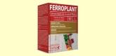 Ferroplant - Hierro y Vitaminas - 60 comprimidos - Dietmed
