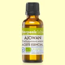 Ajowan - Aceite Esencial Bio - 30 ml - Terpenic Labs