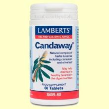Candaway - 60 cápsulas - Lamberts