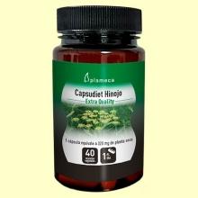 Capsudiet Hinojo - 40 cápsulas - Plameca