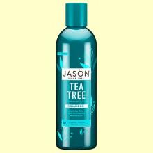 Champú Árbol del Té - 517 ml - Jason