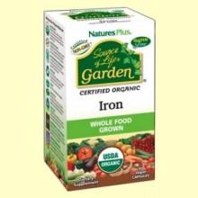 Garden Hierro - 30 cápsulas - Natures Plus
