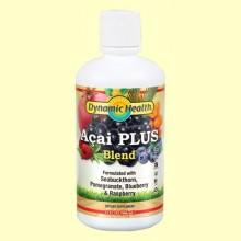 Zumo de Açai - El zumo de antioxidante - 946 ml - Dynamic Health