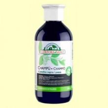 Champú Henna Cabellos Negros - 300 ml - Corpore Sano