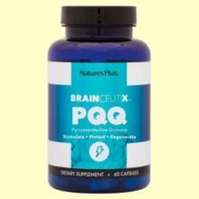 Brainceutix PQQ - 60 cápsulas - Natures Plus