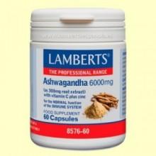 Ashwagandha - 60 cápsulas - Lamberts