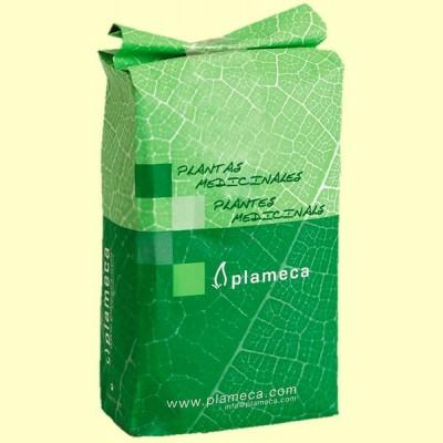 Té de Roca (Jasonia Glutinosa) Triturada - 1 kg - Plameca