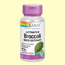 Activated broccoli Seed Extract - 30 cápsulas - Solaray