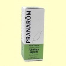 Albahaca Sagrada - Aceite esencial - 5 ml - Pranarom