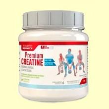 Premium Creatine - 428 gramos - Marnys
