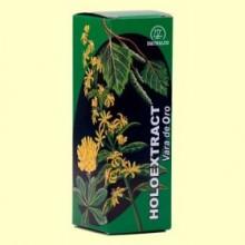 Holoextract Vara de Oro - 50 ml - Equisalud