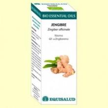 Aceite Esencial Bio de Jengibre - 10 ml - Equisalud
