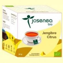 Jengibre Citrus Bio - 10 pirámides - Josenea