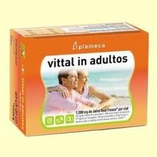 Vittal In Adultos - Jalea Real Fresca - 20 viales - Plameca