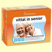 Vittal In Senior - Jalea Real Fresca - 20 ampollas - Plameca