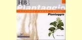 Plantaggio HB - Boldo - Reishi - Derbós - 20 viales