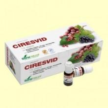 Ciresvid - Circulación de las Piernas - 14 viales - Soria Natural