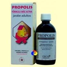 Própolis Jarabe Echinacea Adultos - 200 ml - Gricar