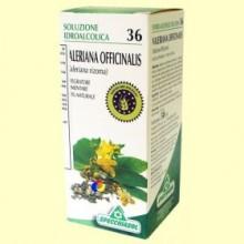 Valeriana Solución Hidroalcohólica - 50 ml - Specchiasol