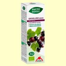 Phytobiopôle Grosellero Negro - 50 ml - Intersa