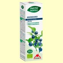 Phytobiopôle Arándano - 50 ml - Intersa