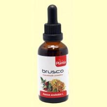 Extracto de Brusco - 50 ml - Plantis