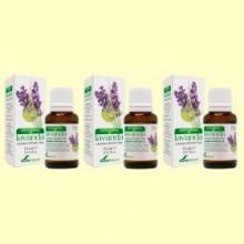 Aceite Esencial de Lavanda - Pack 3 x 15 ml - Soria Natural