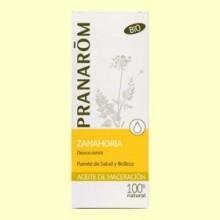 Aceite de maceración Zanahoria Bio - 50 ml - Pranarom