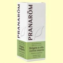 Orégano Aceite Esencial - 10 ml - Pranarom