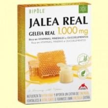 Jalea Real 1000 mg - 20 ampollas - Bipôle