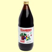 Zumo de arándano rojo ecológico - Cranberry - 1 litro - Plantis