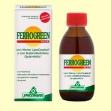 Ferrogreen Jarabe Hierro con Vitaminas y Oligoelementos - 170 ml - Specchiasol